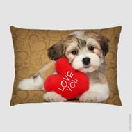 Almofada-35x26-cm---Pet-Love-You